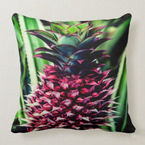 red pineapple pillow